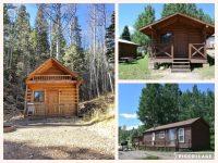 cabin collage.jpg