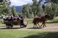 Miller_Wagon Ride Wedding.jpg