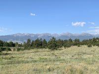 WEB-Meadow-Mountain-View.jpg