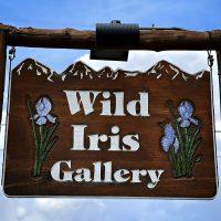 Wild_Iris.jpg