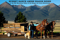 AmishWagonRides-FreetoUse.png