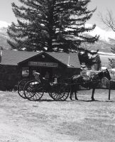 Custer-County-Realty-with-horse-and-buggy.jpg