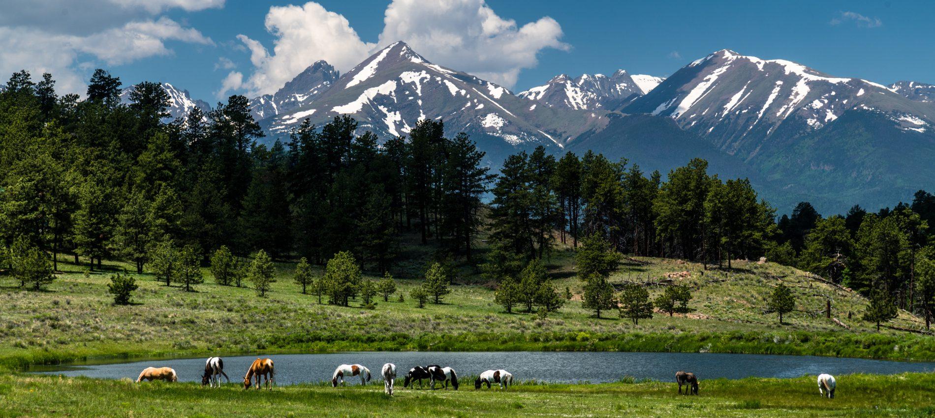 Wet Mountain Valley Scenery