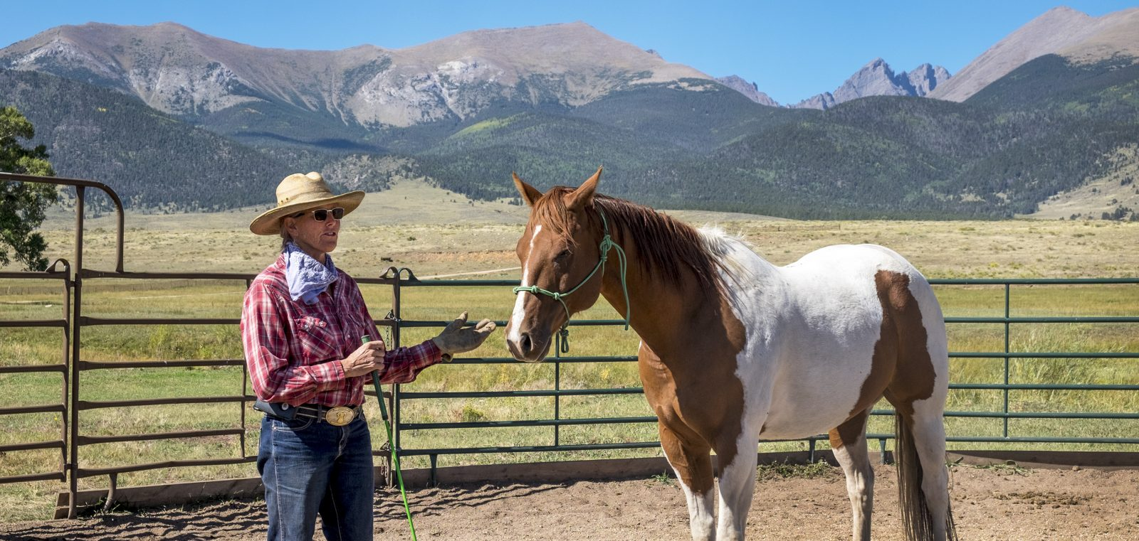 Custer County's Unique Ranching Experiences
